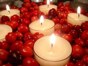 Thanksgiving centerpiece. Thanksgiving decor. Cranberries