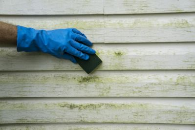 vinyl siding. how to clean vinyl siding. best cleaning practices