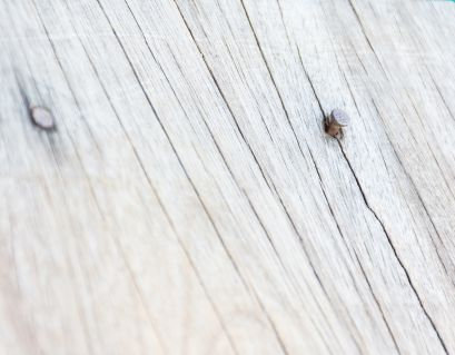 cracked deck boards, cracking in decks, old deck wood