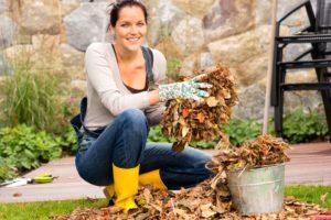 rake leaves. composting tips. fall maintenance.