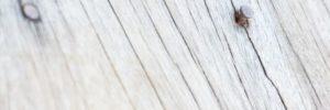 cracked deck boards, cracking in decks, old deck wood