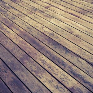 deck wash, stains on a deck, mold on deck